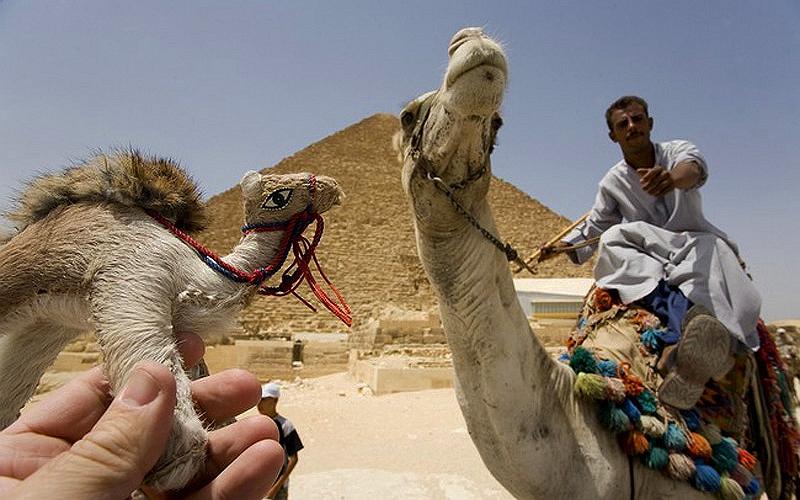 Египет Пирамиды Гизы