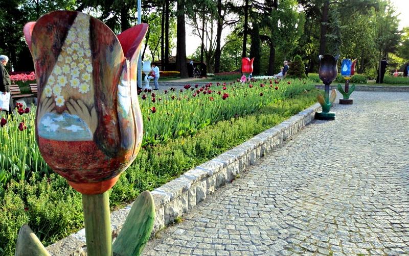 Фестиваль тюльпанов в Стамбуле3