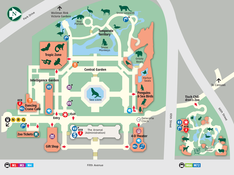 Карта зоопарка в Нью-Йорке