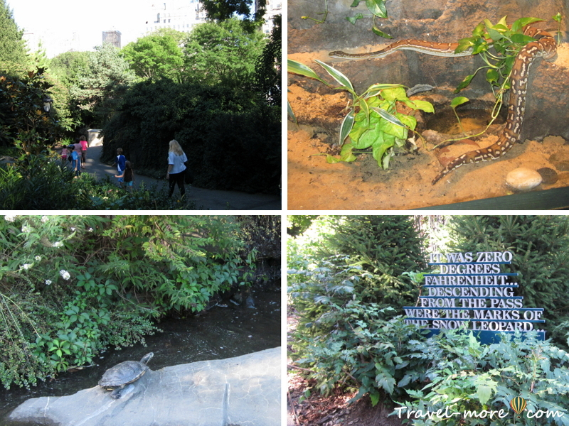 Нью-Йорк Часть 2 Зоопарк