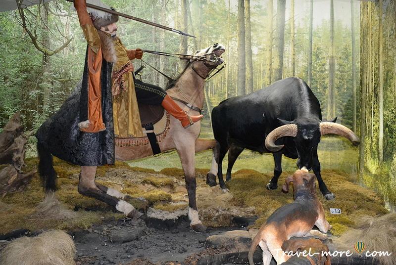 Охота Музей природы Беловежская Пуща
