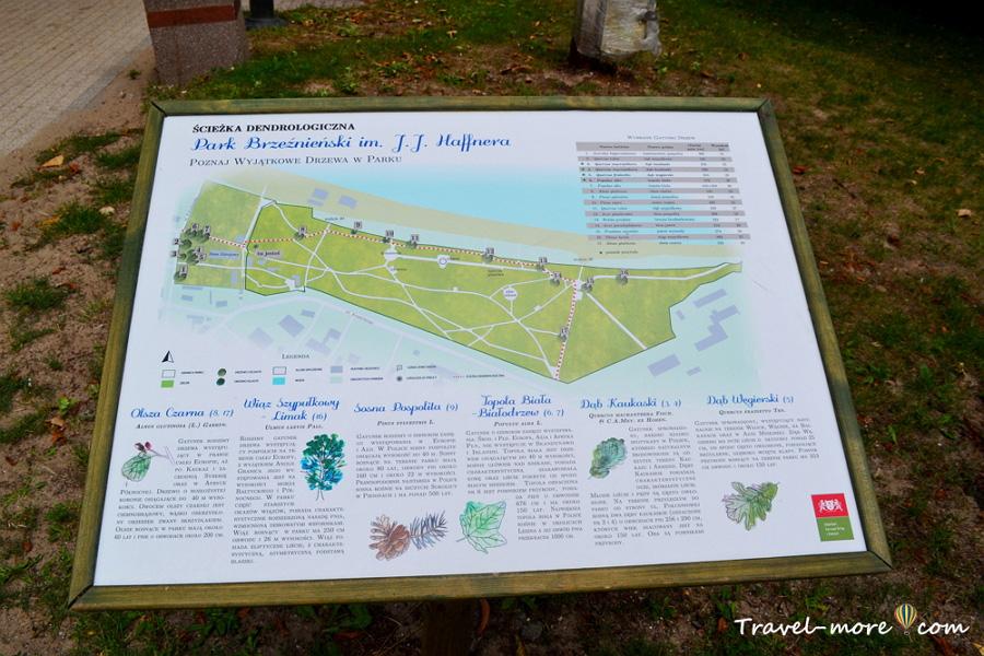Парк в Бжезьно