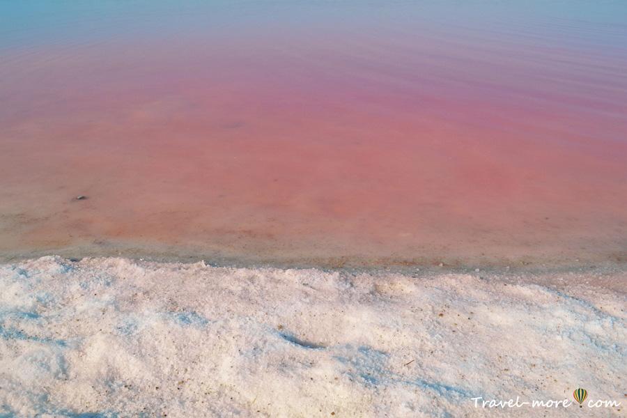 Розовое озеро Торревьеха