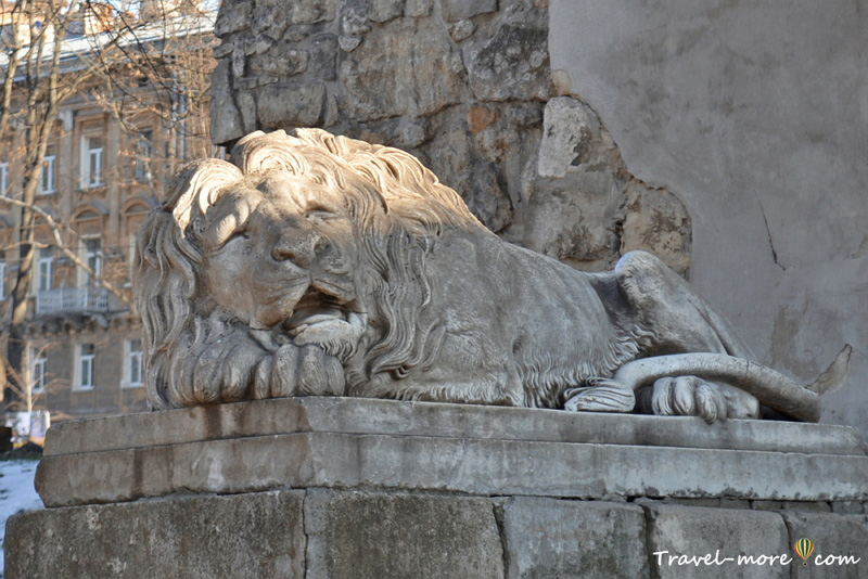 Лев во Львове